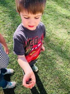 Boy holding a caterpillar